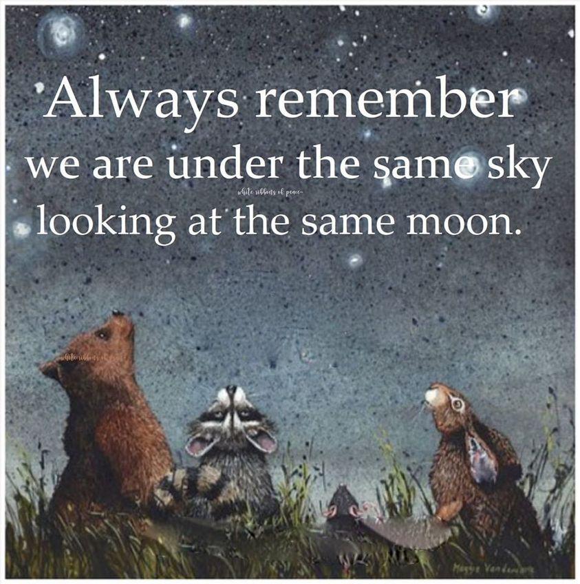 always remember same sky.jpg