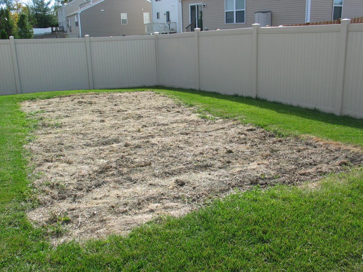 Backyard #4 10-19-17.jpg