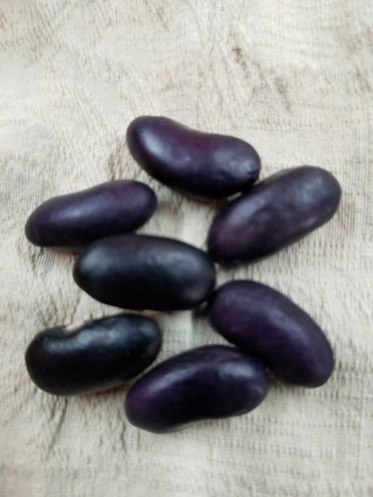 Banzala Seeds.jpg