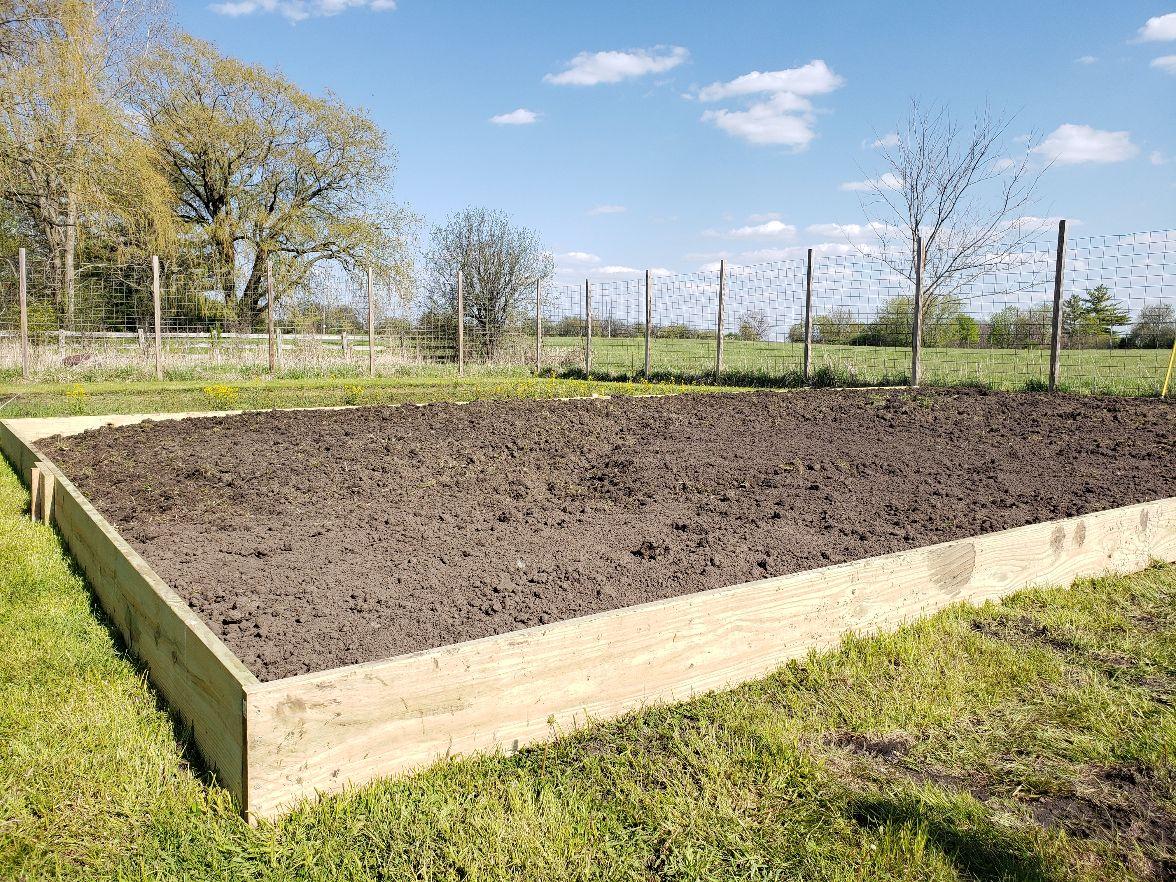 Bean Acres Raised Bed Box - Day #3 #3.jpg