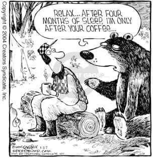bear wants coffee.jpg