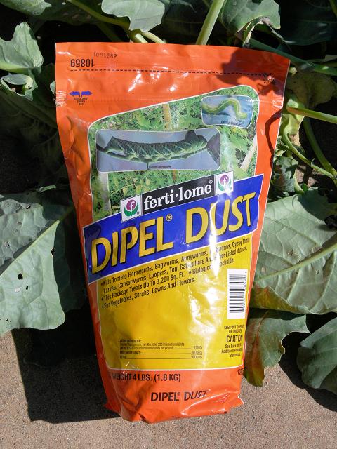 Diple_Dust_Bt.jpg