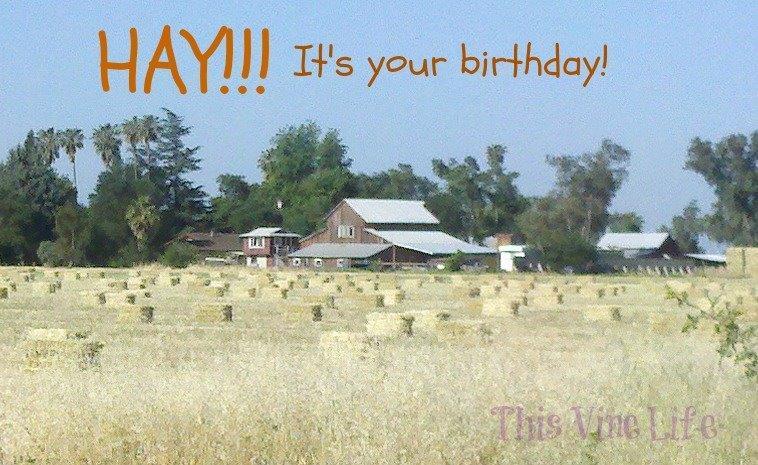 Hay Birthday.jpg