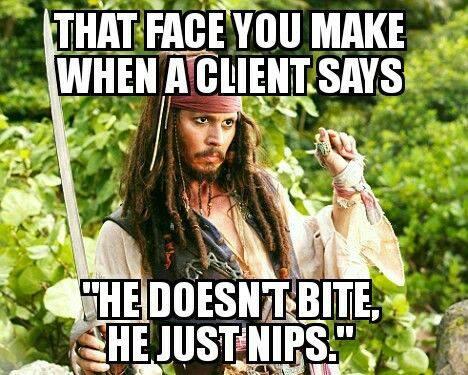 he just nips.jpg