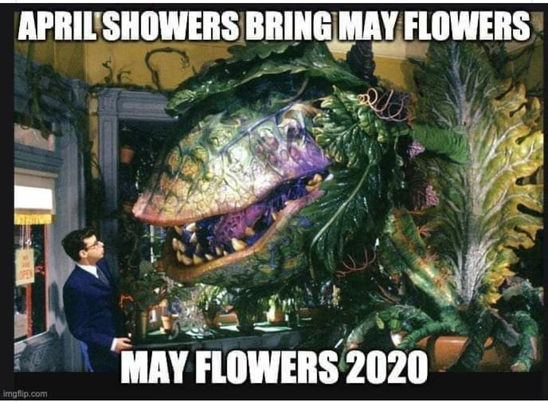 may flowers 2020.jpg