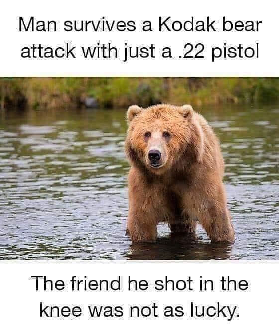 outrun the bear.jpg