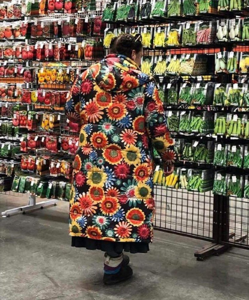 Seed Shopping.jpg