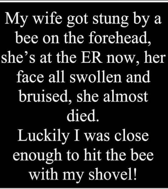 stung by a bee.jpg
