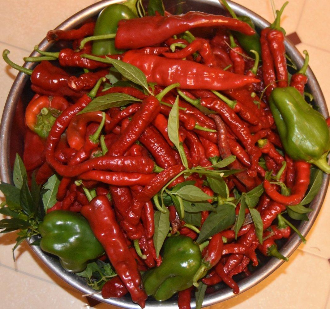 teg red peppersbowl.jpg