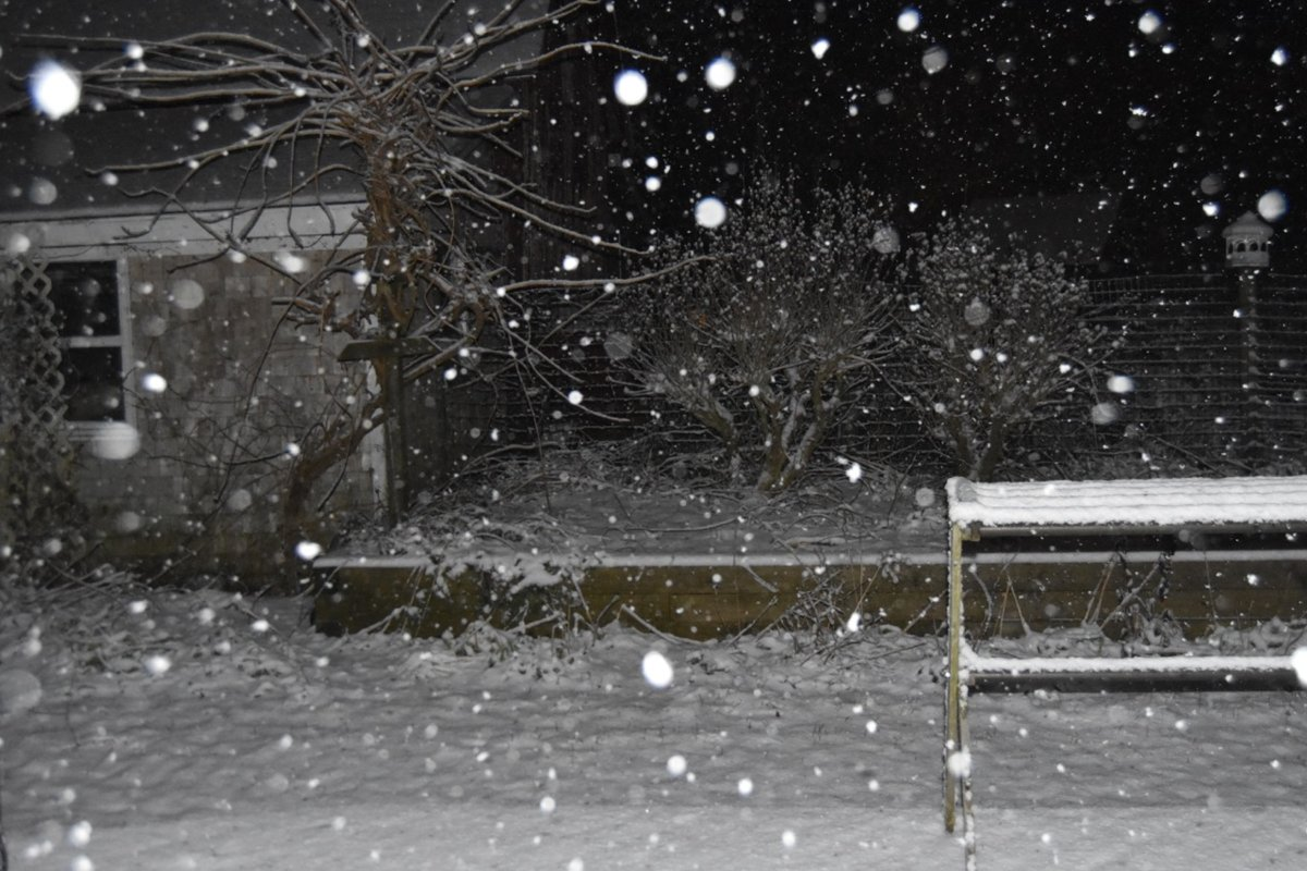 teg snow.jpg