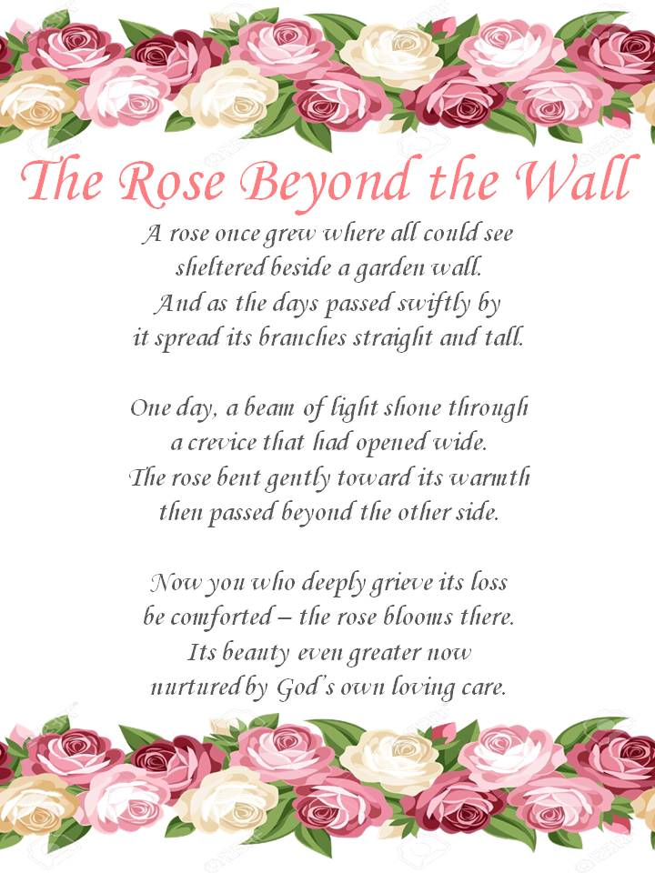 The Rose Beyond the Wall.jpg