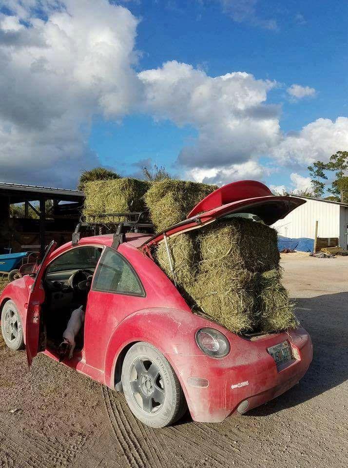 volkswagan hay wagon.jpg