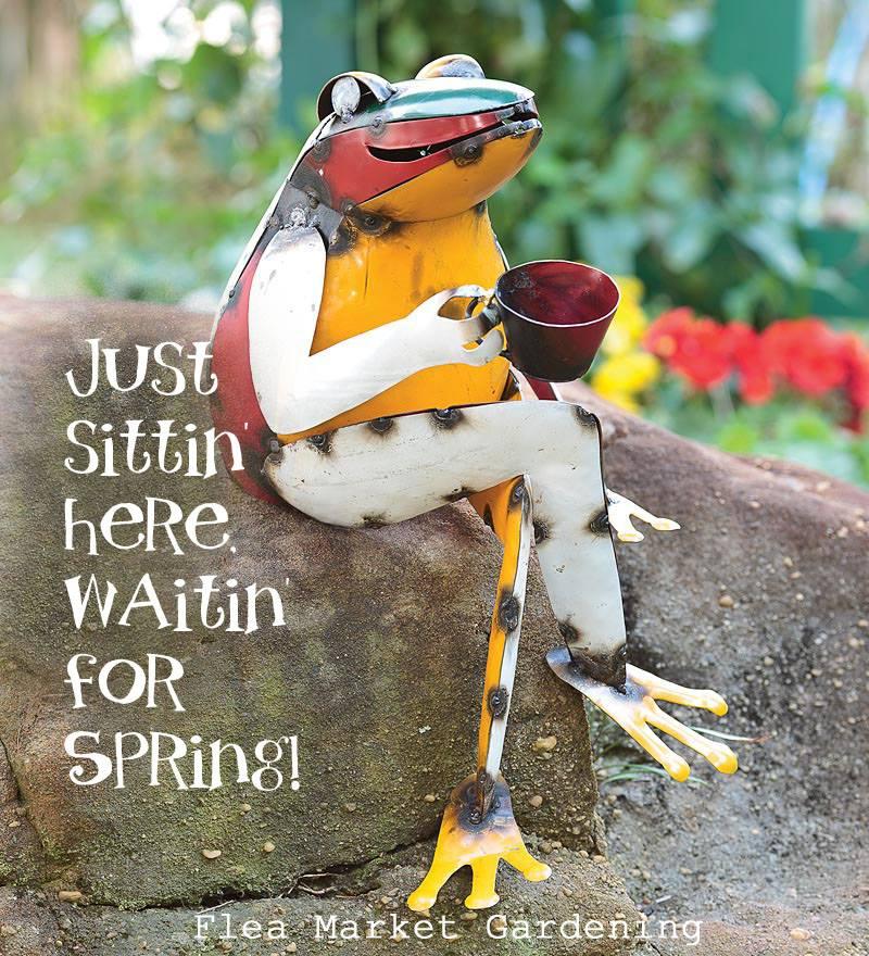 waiting for spring.jpg