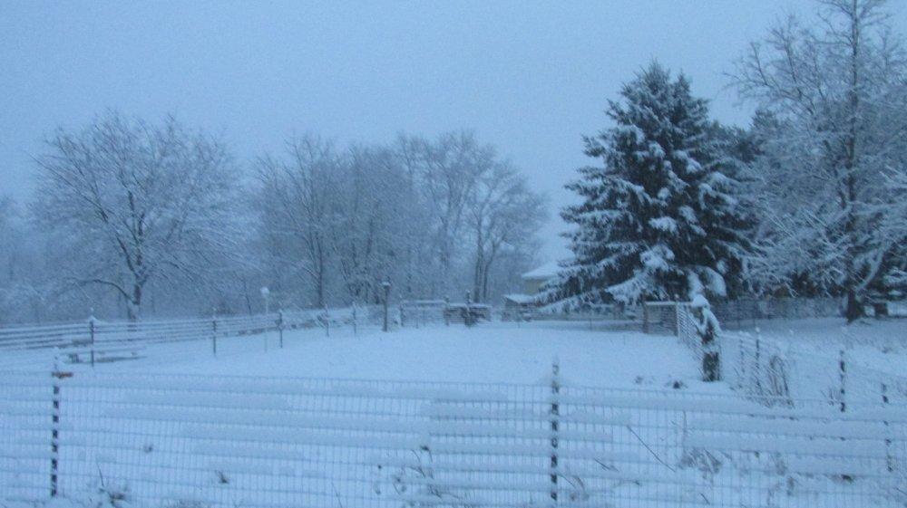 winter 2014 - 2015 003.JPG