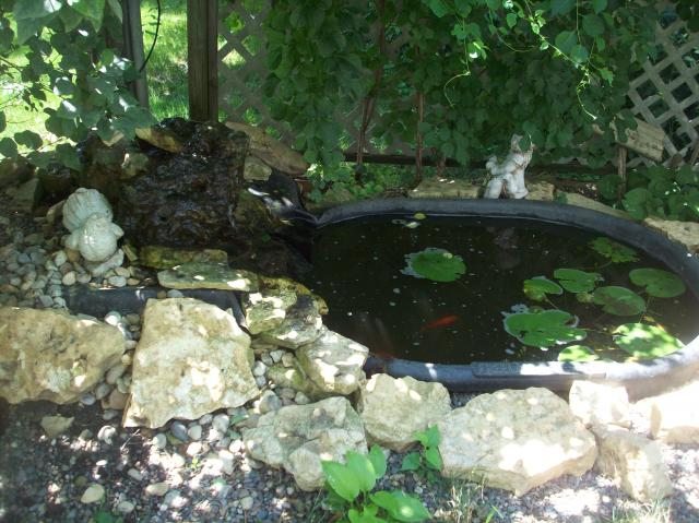Garden pond from a plastic stock tank for Putting in a pond